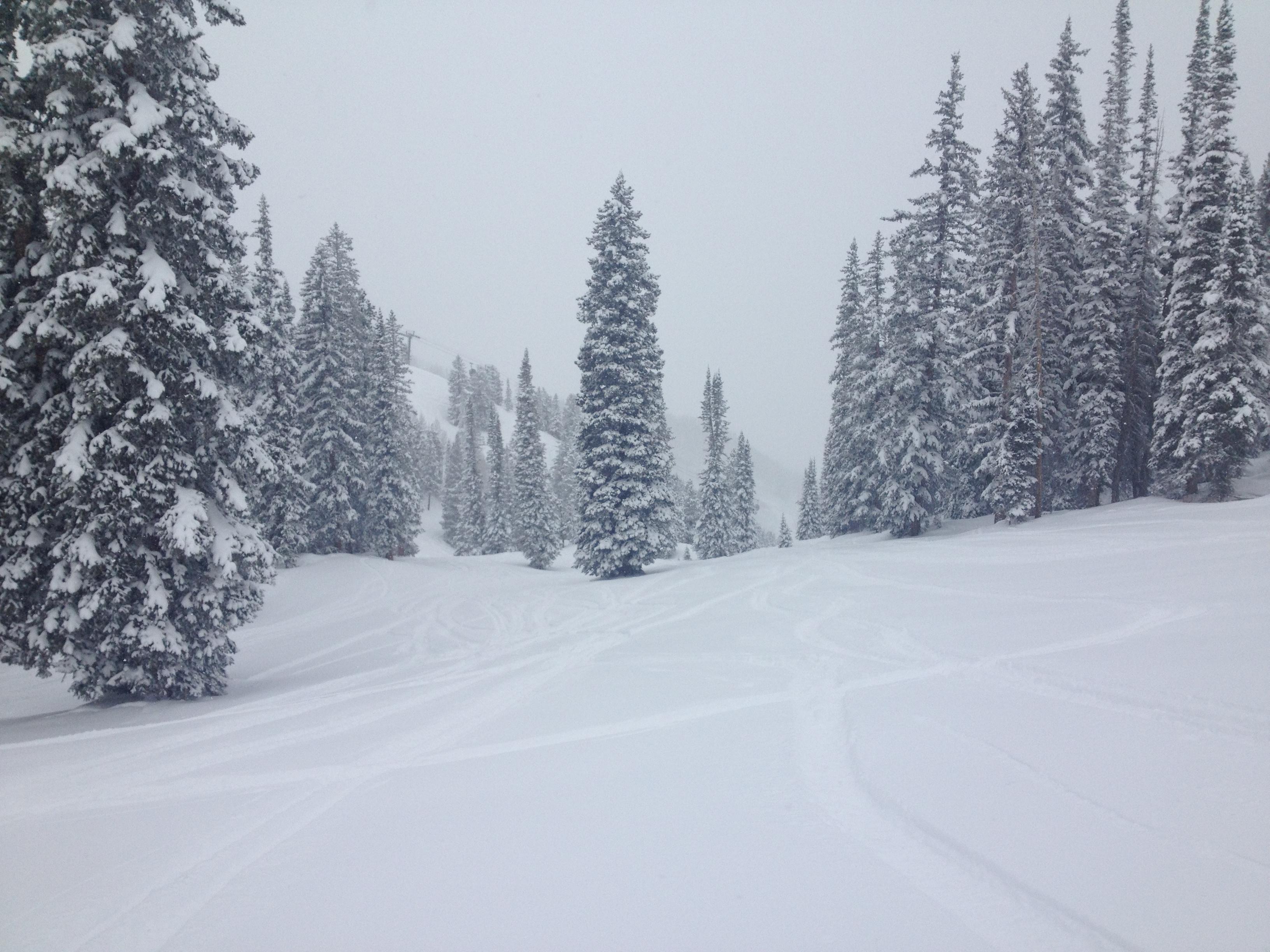 Aspen in Winter | My Favorite Things