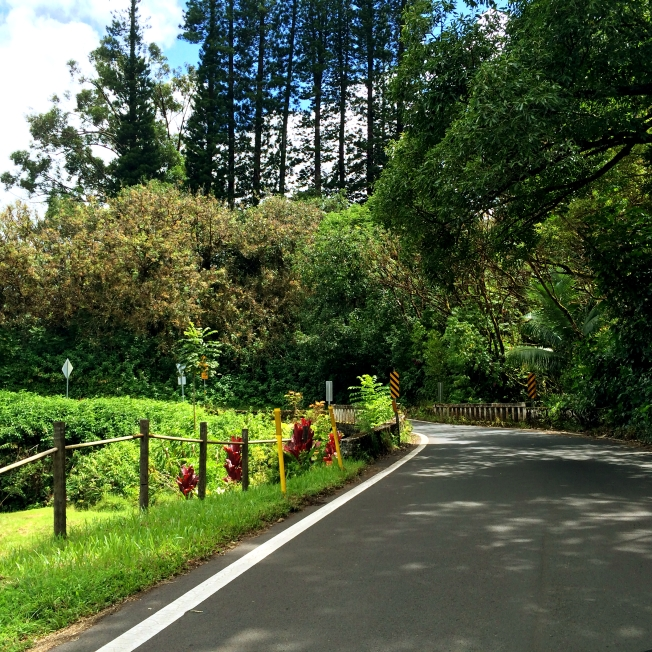 Road to Hana, Maui / www.sarasfavoritethings.com