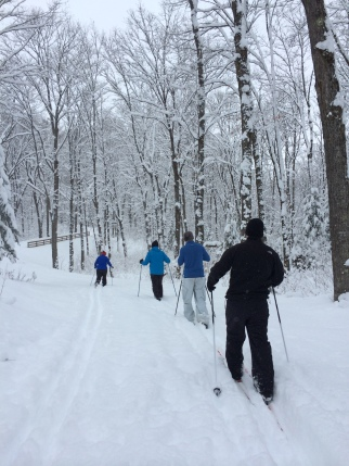 Cross country skiing through the woods